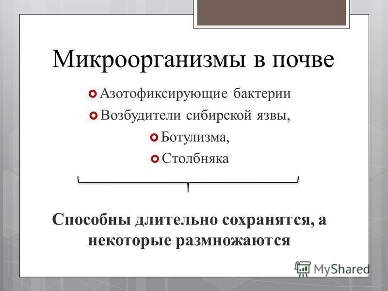 Микроорганизмы в почве Азотофиксирующие бактерии Возбудители сибирской язвы, Ботулизма, Столбняка Способны длительно сохранятся, а некоторые размножаются