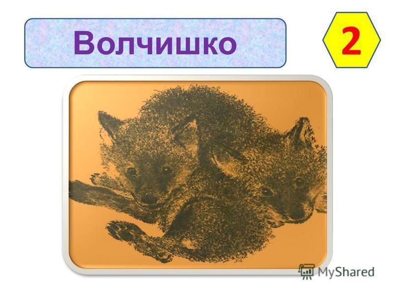 Волчишко 2