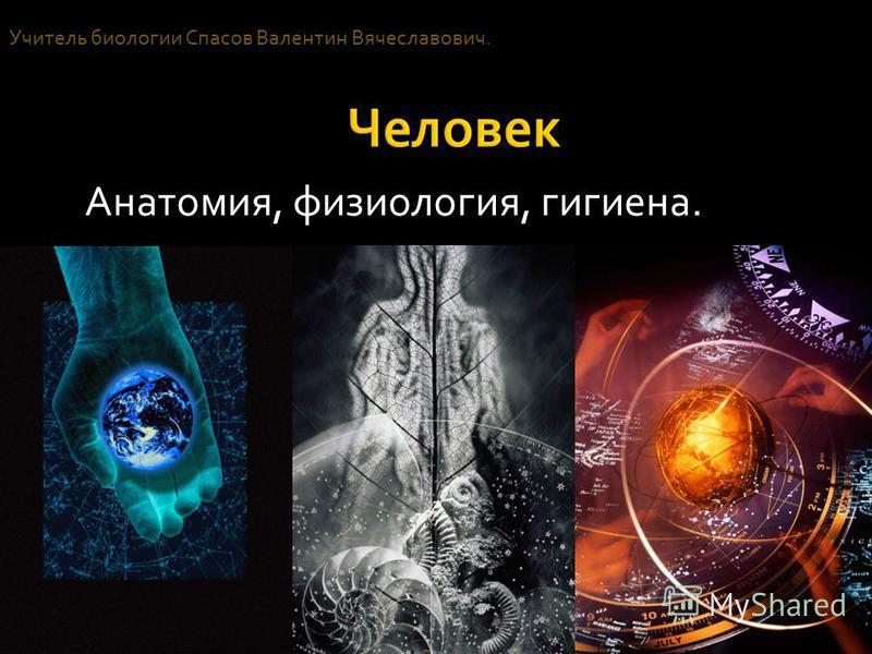 Анатомия, физиология, гигиена. Учитель биологии Спасов Валентин Вячеславович.