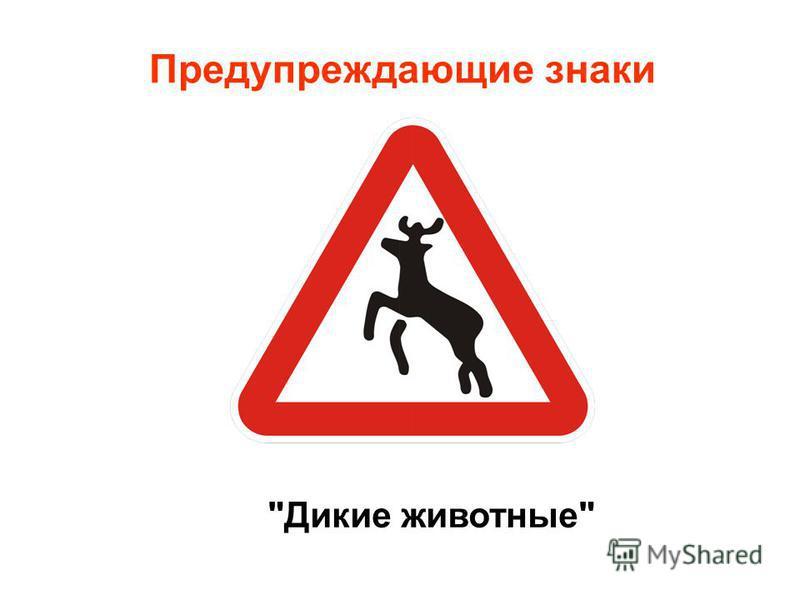 Предупреждающие знаки Дикие животные