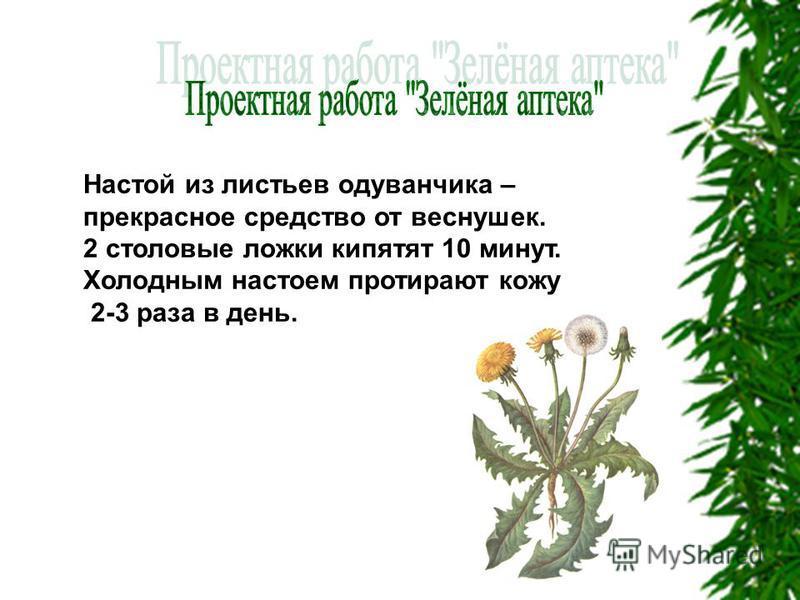 Настой из листьев оодуванчика – прекрасное средство от веснушек. 2 столовые ложки кипятят 10 минут. Холодным настоем протирают кожу 2-3 раза в день.