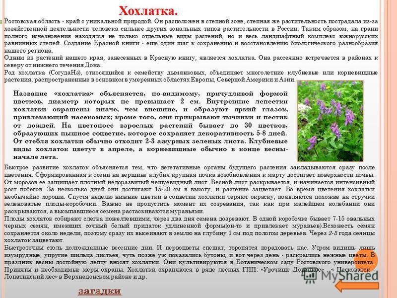 Ростовская область - край с уникальной природой. Он расположен в степной зоне, степная же растительность пострадала из-за хозяйственной деятельности человека сильнее других зональных типов растительности в России. Таким образом, на грани полного исче