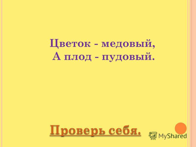 Цветок - медовый, А плод - пудовый.