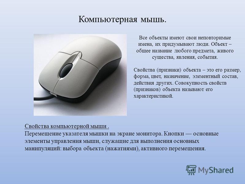 Компьютерная мышь. Все объекты имеют свои неповторимые имена, их придумывают люди. Объект – общее название любого предмета, живого существа, явления, события. Свойства (признаки) объекта – это его размер, форма, цвет, назначение, элементный состав, д
