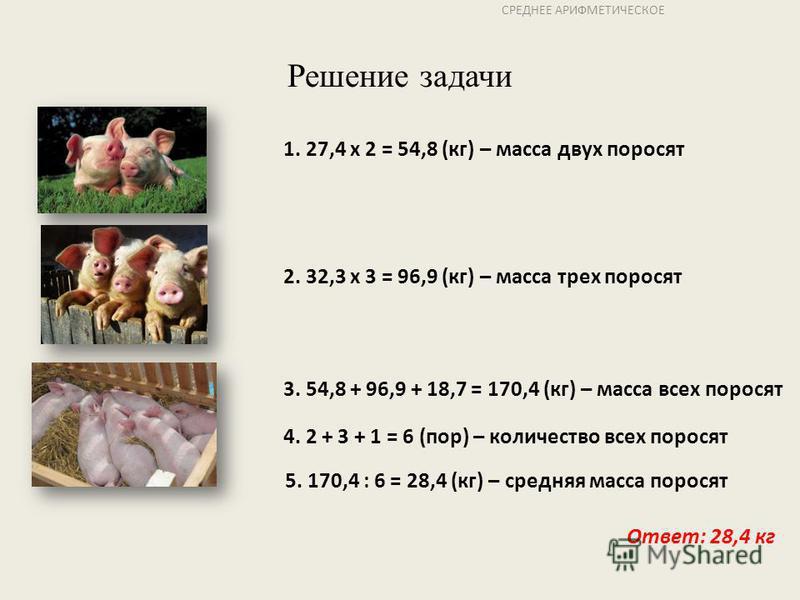 СРЕДНЕЕ АРИФМЕТИЧЕСКОЕ Решение задачи 1. 27,4 х 2 = 54,8 (кг) – масса двух поросят 2. 32,3 х 3 = 96,9 (кг) – масса трех поросят 3. 54,8 + 96,9 + 18,7 = 170,4 (кг) – масса всех поросят 4. 2 + 3 + 1 = 6 (пор) – количество всех поросят 5. 170,4 : 6 = 28