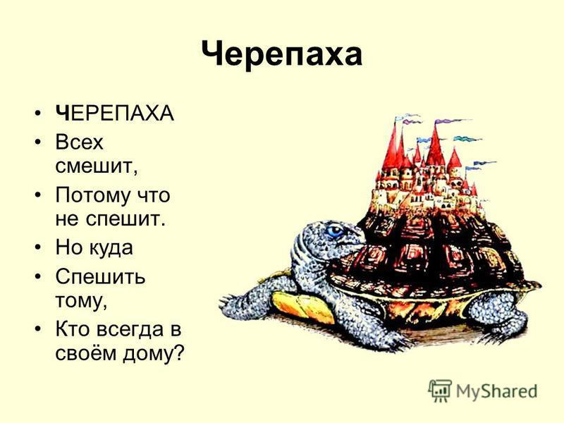 Черепаха ЧЕРЕПАХА Всех смешит, Потому что не спешит. Но куда Спешить тому, Кто всегда в своём дому?