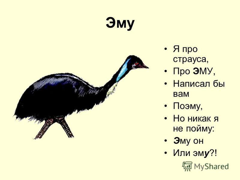 Эму Я про страуса, Про ЭМУ, Написал бы вам Поэму, Но никак я не пойму: Эму он Или эму?!