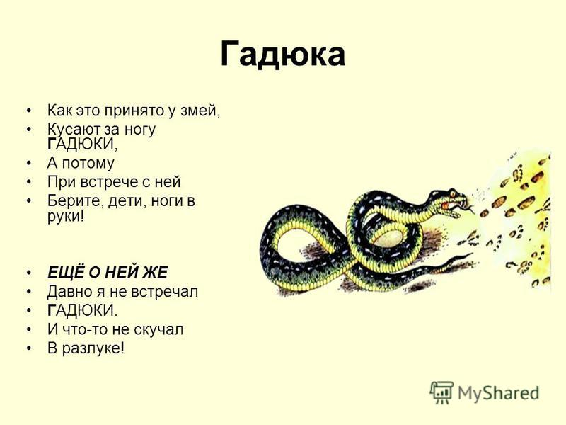 Гадюка Как это принято у змей, Кусают за ногу ГАДЮКИ, А потому При встрече с ней Берите, дети, ноги в руки! ЕЩЁ О НЕЙ ЖЕ Давно я не встречал ГАДЮКИ. И что-то не скучал В разлуке!