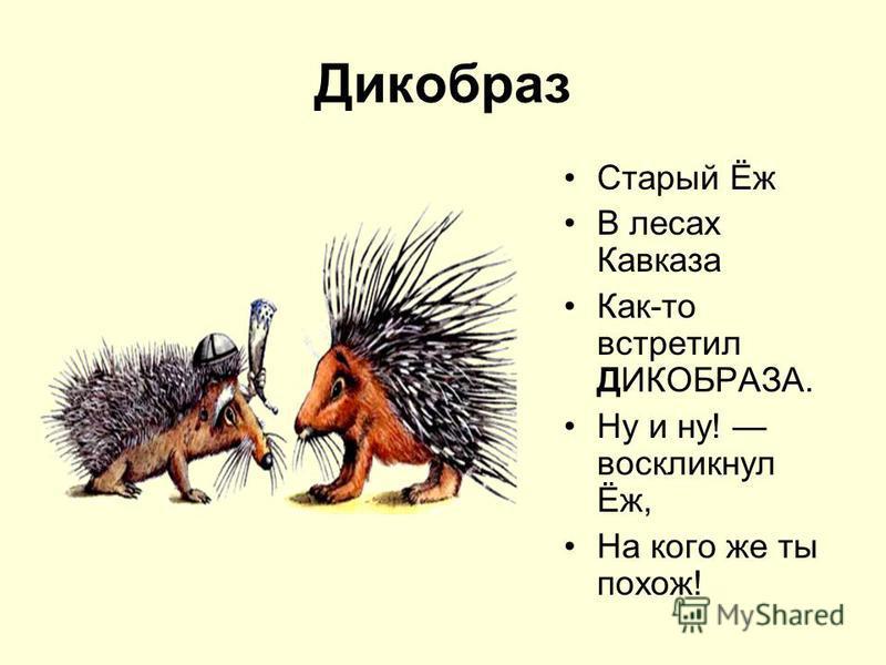 Дикобраз Старый Ёж В лесах Кавказа Как-то встретил ДИКОБРАЗА. Ну и ну! воскликнул Ёж, На кого же ты похож!