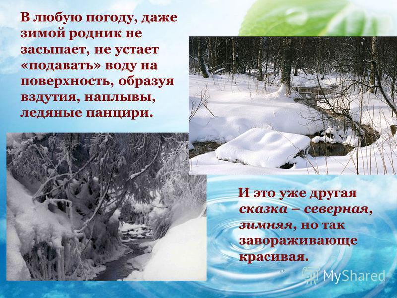 В любую погоду, даже зимой родник не засыпает, не устает «подавать» воду на поверхность, образуя вздутия, наплывы, ледяные панцири. И это уже другая сказка – северная, зимняя, но так завораживающе красивая.