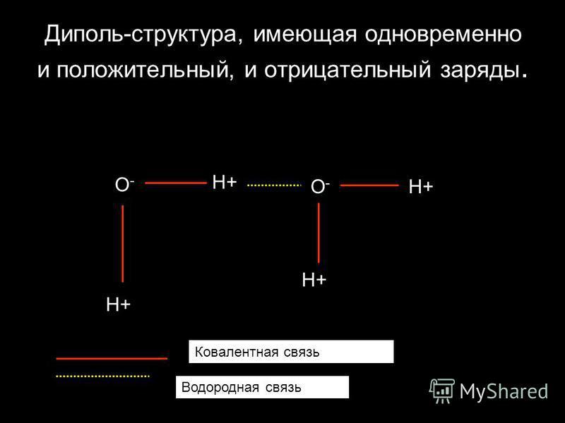 Диполь-структура, имеющая одновременно и положительный, и отрицательный заряды. O-O- H+ O-O- Ковалентная связь Водородная связь