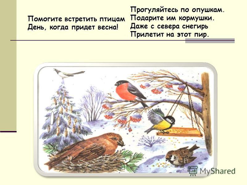 Помогите встретить птицам День, когда придет весна! Прогуляйтесь по опушкам. Подарите им кормушки. Даже с севера снегирь Прилетит на этот пир.