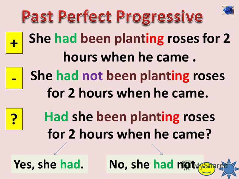 She had been planting roses for 2 hours when he came. + - ? She had not been planting roses for 2 hours when he came. Had she been planting roses for 2 hours when he came? Yes, she had.No, she had not.