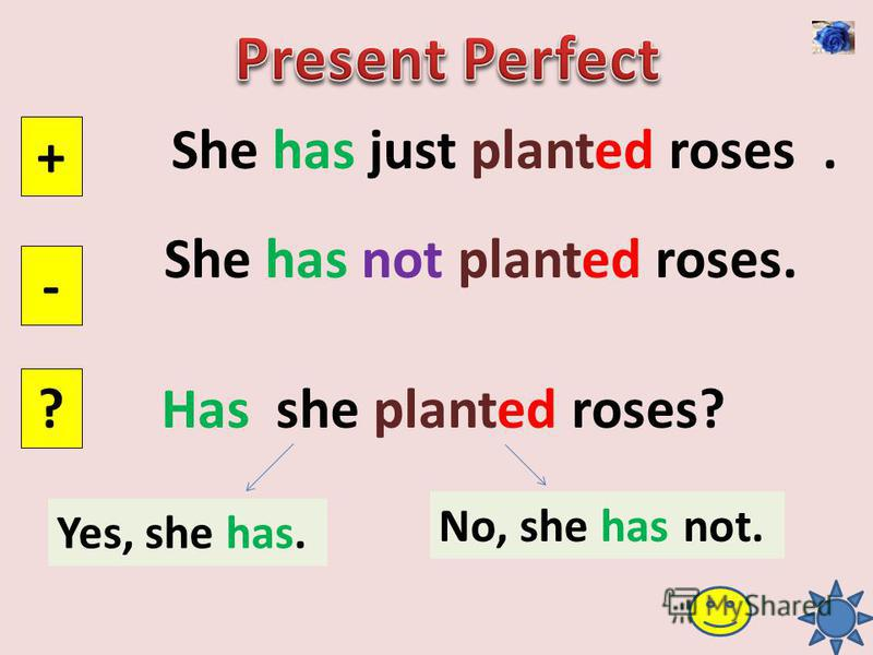 She has just planted roses. + - ? She has not planted roses. Has she planted roses? Yes, she has. No, she has not.