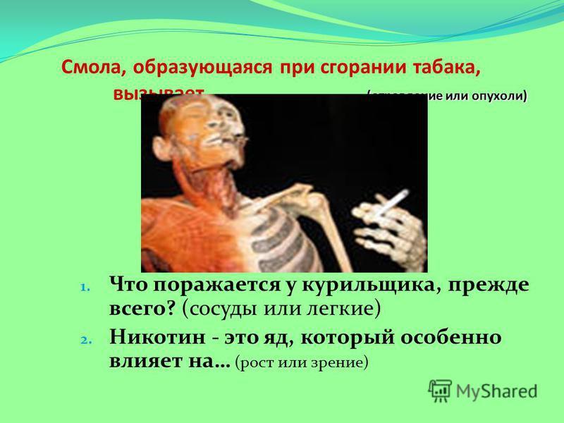 (отравление или опухоли) Смола, образующаяся при сгорании табака, вызывает… (отравление или опухоли) 1. Что поражается у курильщика, прежде всего? (сосуды или легкие) 2. Никотин - это яд, который особенно влияет на… (рост или зрение)