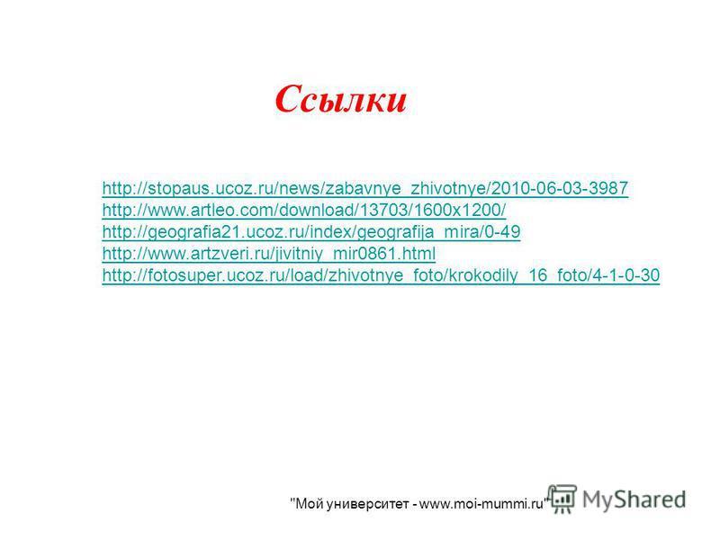 Ссылки http://stopaus.ucoz.ru/news/zabavnye_zhivotnye/2010-06-03-3987 http://www.artleo.com/download/13703/1600x1200/ http://geografia21.ucoz.ru/index/geografija_mira/0-49 http://www.artzveri.ru/jivitniy_mir0861. html http://fotosuper.ucoz.ru/load/zh
