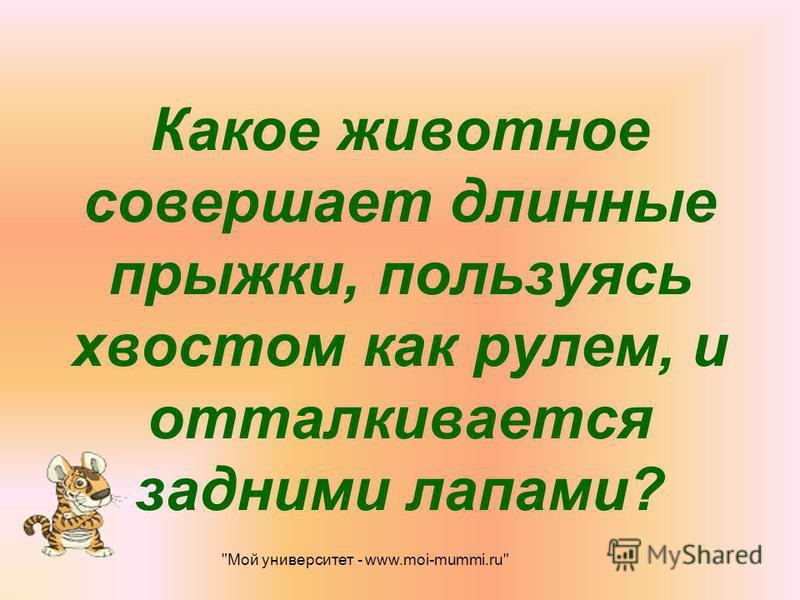 Какое животное совершает длинные прыжки, пользуясь хвостом как рулем, и отталкивается задними лапами? Мой университет - www.moi-mummi.ru