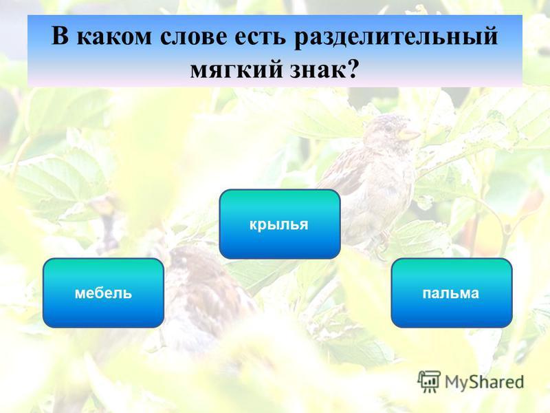 крылья мебель пальма В каком слове есть разделительный мягкий знак?