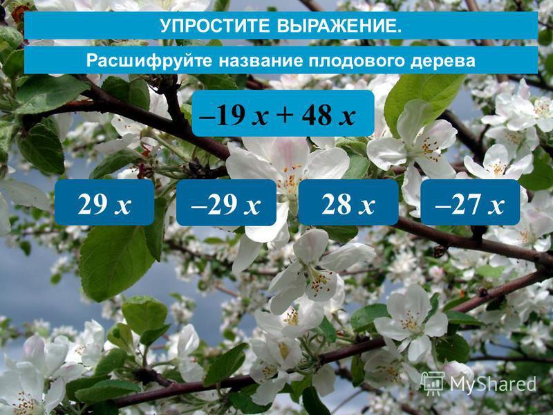 Расшифруйте название плодового дерева –19 х + 48 х 29 х –29 х 28 х–27 х УПРОСТИТЕ ВЫРАЖЕНИЕ.