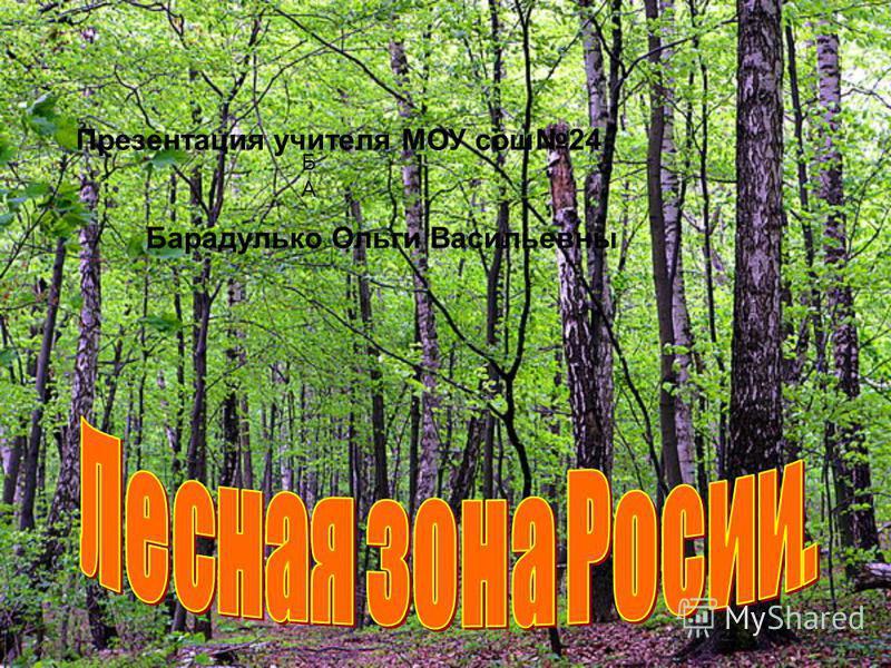 Презентация учителя МОУ сош 24 БАБА Барадулько Ольги Васильевны