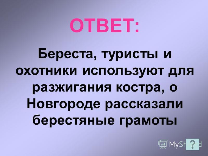 ОТВЕТ: Береста, туристы и охотники используют для разжигания костра, о Новгороде рассказали берестяные грамоты
