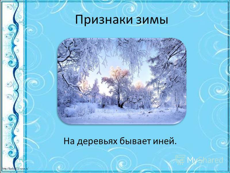 Признаки зимы На деревьях бывает иней.