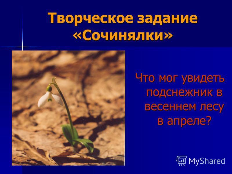 Творческое задание «Сочинялки» Что мог увидеть подснежник в весеннем лесу в апреле?