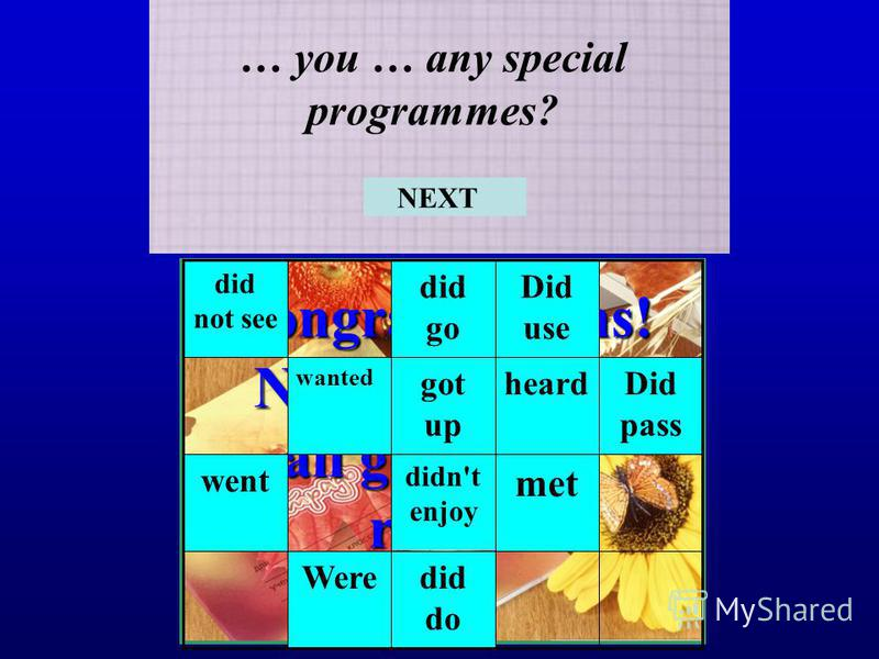 Congratulations! Now you know all grammar rules! … you … any special programmes? did do Were met didn't enjoy went Did pass heardgot up wanted Did use did go did not see NEXT