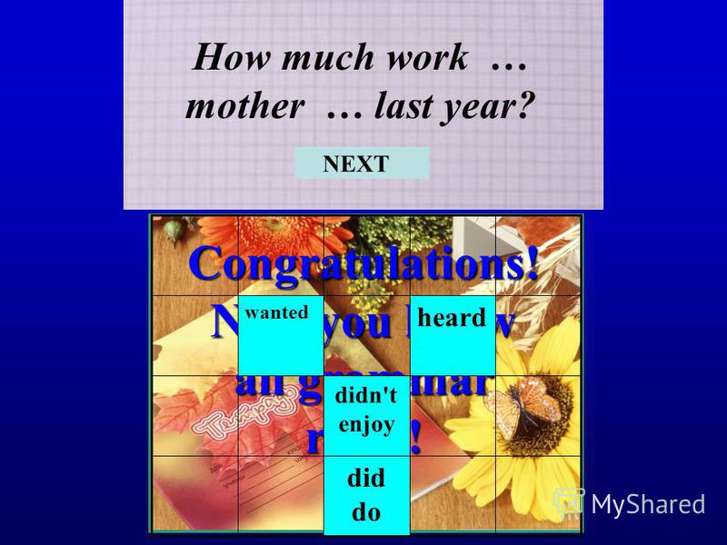 Congratulations! Now you know all grammar rules! How much work … mother … last year? did do didn't enjoy heard wanted NEXT
