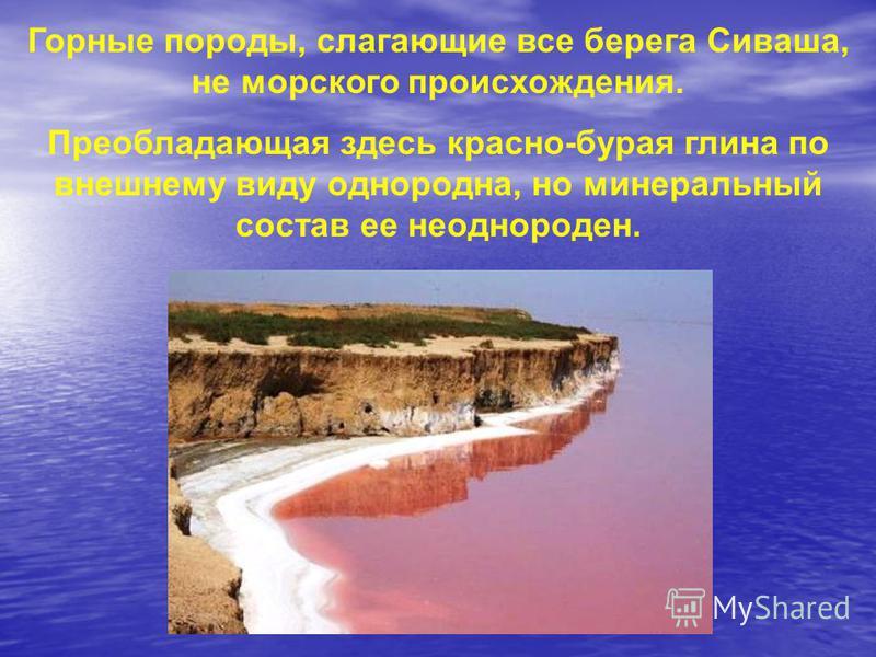 Горные породы, слагающие все берега Сиваша, не морского происхождения. Преобладающая здесь красно-бурая глина по внешнему виду однородна, но минеральный состав ее неоднороден.