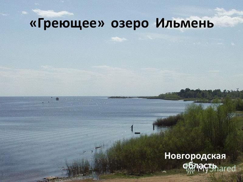 «Греющее» озеро Ильмень Новгородская область