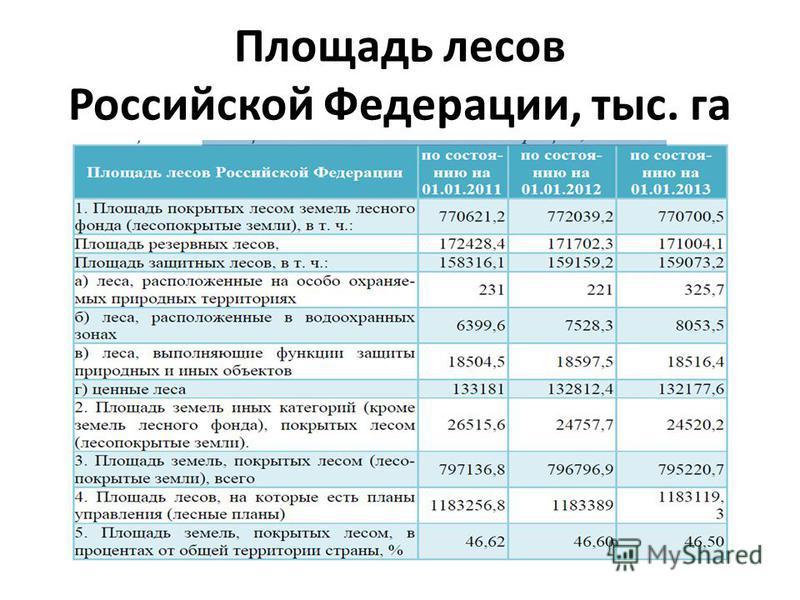 Площадь лесов Российской Федерации, тыс. га