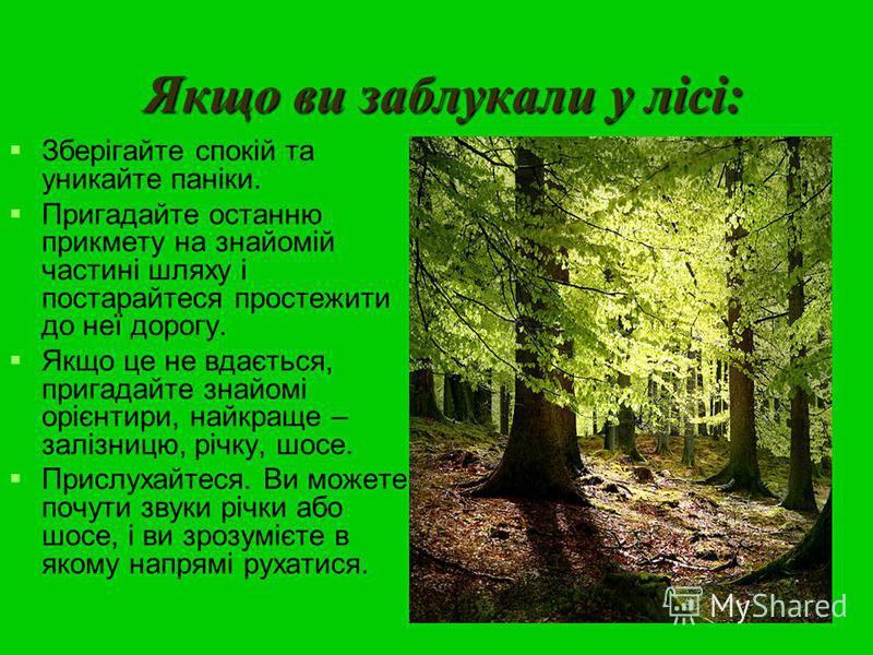 Якщо ви заблукали у лісі: Зберігайте спокій та уникайте паніки. Пригадайте останню прикмету на знайомій частині шляху і постарайтеся простежити до неї дорогу. Якщо це не вдається, пригадайте знайомі орієнтири, найкраще – залізницю, річку, шосе. Присл