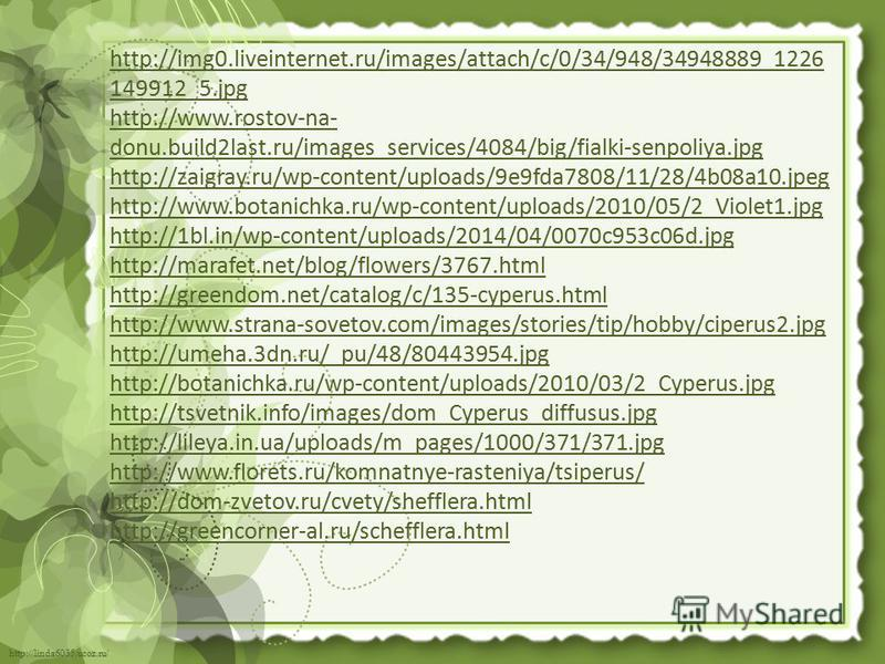 http://linda6035.ucoz.ru/ http://img0.liveinternet.ru/images/attach/c/0/34/948/34948889_1226 149912_5. jpg http://www.rostov-na- donu.build2last.ru/images_services/4084/big/fialki-senpoliya.jpg http://zaigray.ru/wp-content/uploads/9e9fda7808/11/28/4b