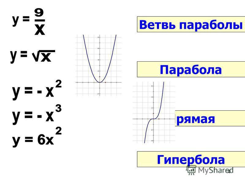 4 Парабола Ветвь параболы Гипербола Прямая