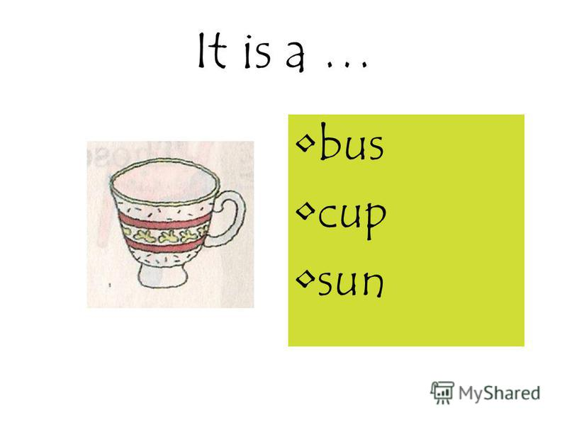 It is a … bus cup sun