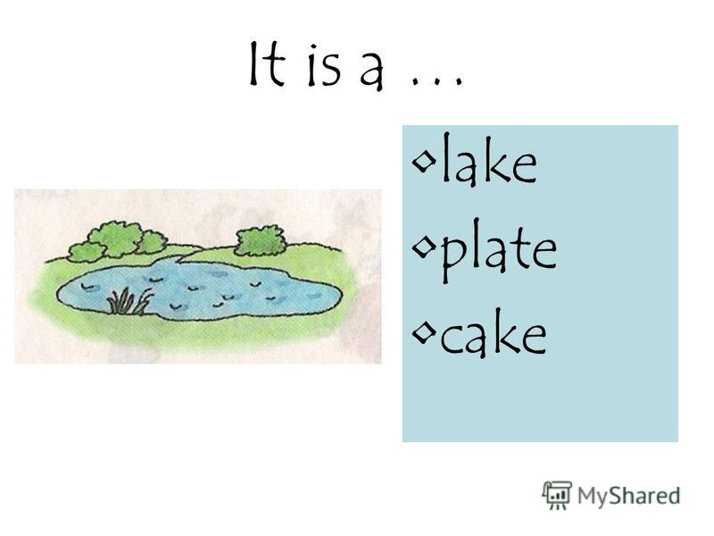 It is a … lake plate cake