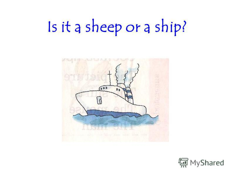 Is it a sheep or a ship?