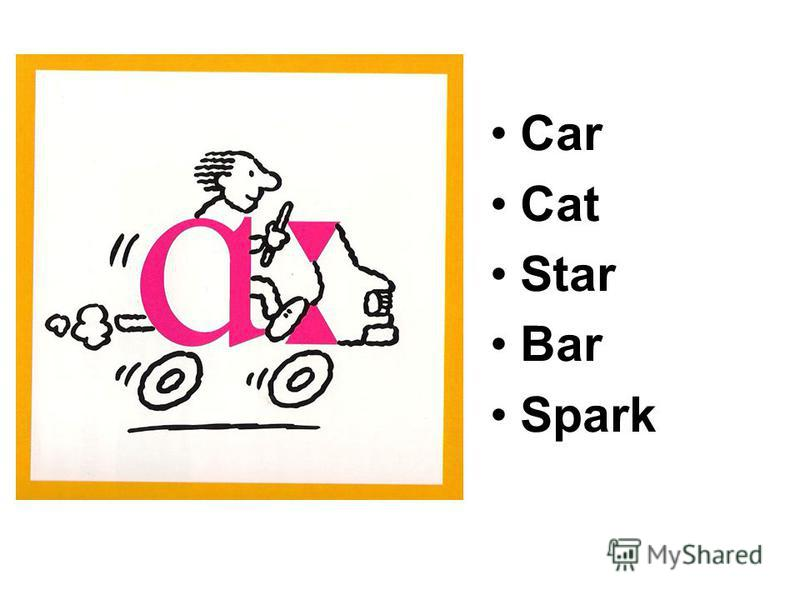 Car Cat Star Bar Spark
