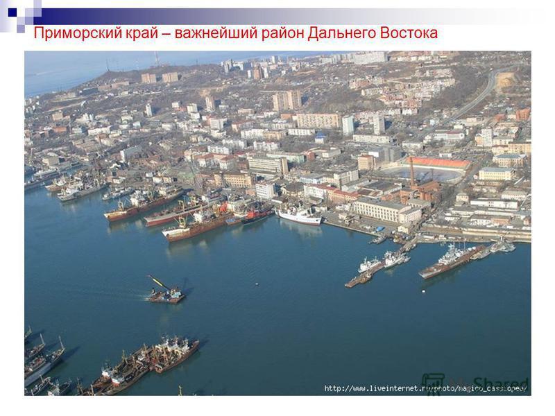 Приморский край – важнейший район Дальнего Востока