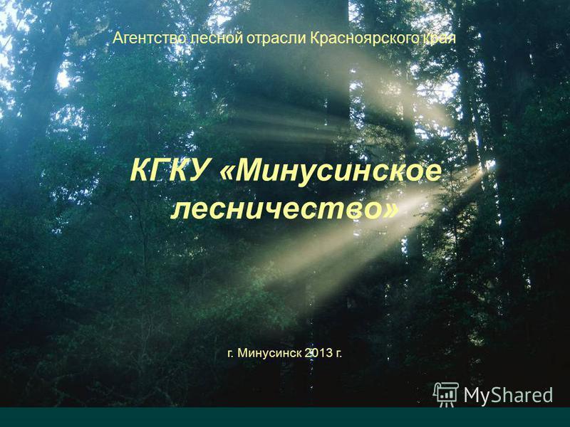 Агентство лесной отрасли Красноярского края КГКУ «Минусинское лесничество» г. Минусинск 2013 г.
