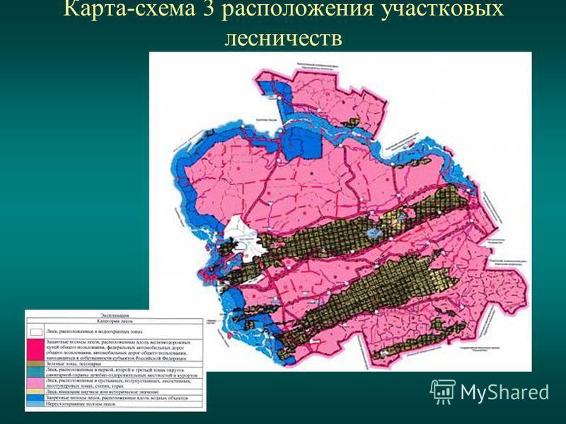 Карта-схема 3 расположения участковых лесничеств
