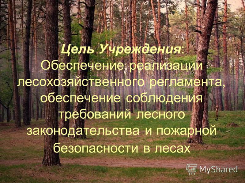 Цель Учреждения: Обеспечение реализации лесохозяйственного регламента, обеспечение соблюдения требований лесного законодательства и пожарной безопасности в лесах
