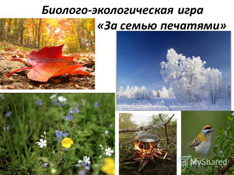 Биолого-экологическая игра «За семью печатями»