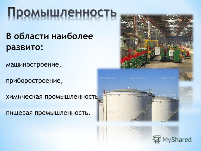 В области наиболее развито: машиностроение, приборостроение, химическая промышленность, пищевая промышленность.