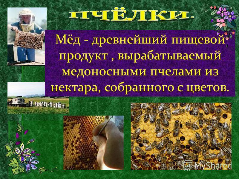 Если пчелы не вылетают из улья, а сидят в них и издают гул, следует ждать дождя в ближайшие 6-8 часов. Когда при облачном небе утром пчелы смело вылетают из улья - значит, жди улучшения погоды. Если пчелы с осени старательно заклеивают щели и уменьша