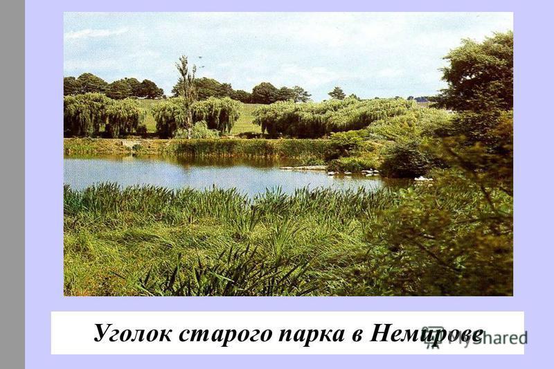 Уголок старого парка в Немирове
