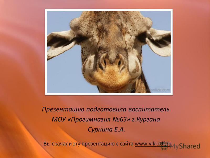 Презентацию подготовила воспитатель МОУ «Прогимназия 63» г.Кургана Сурнина Е.А. Вы скачали эту презентацию с сайта www.viki.rdf.ru