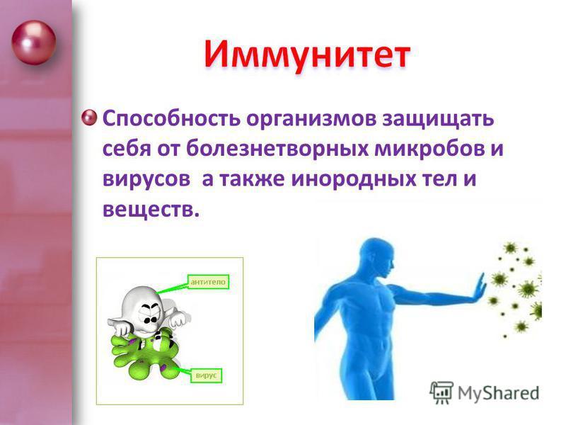 Способность организмов защищать себя от болезнетворных микробов и вирусов а также инородных тел и веществ.