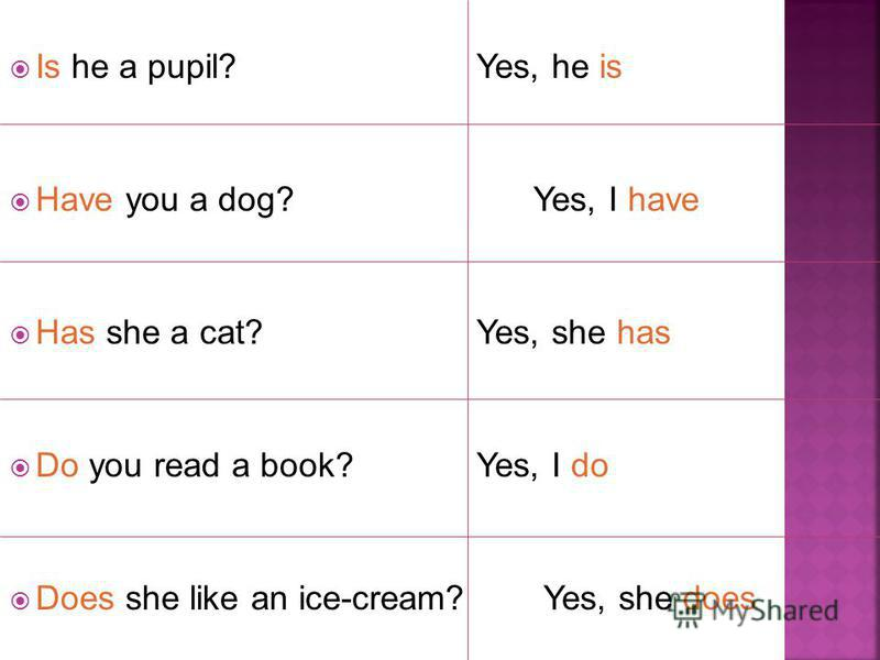 Is he a pupil? Yes, he is Have you a dog? Yes, I have Has she a cat? Yes, she has Do you read a book? Yes, I do Does she like an ice-cream? Yes, she does